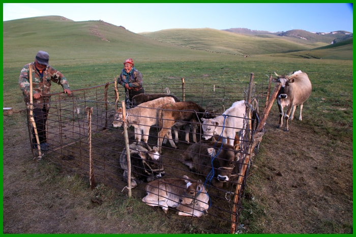 The real nomadic life, Kyrgyzstan tours